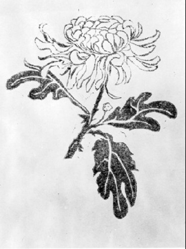 Maurits Cornelis Escher. Chrysanthemum