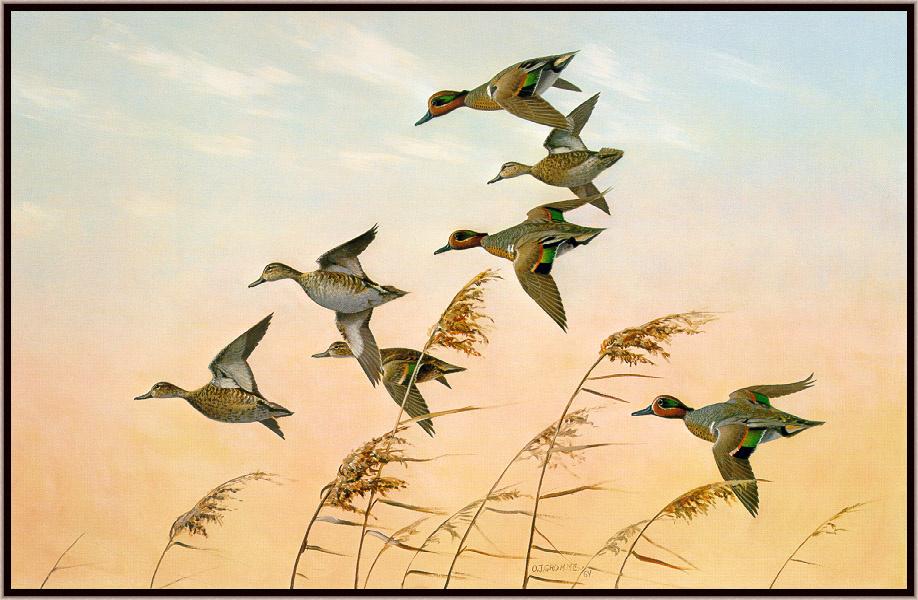 Днем, картинки птицы улетают на юг осенью рисованные