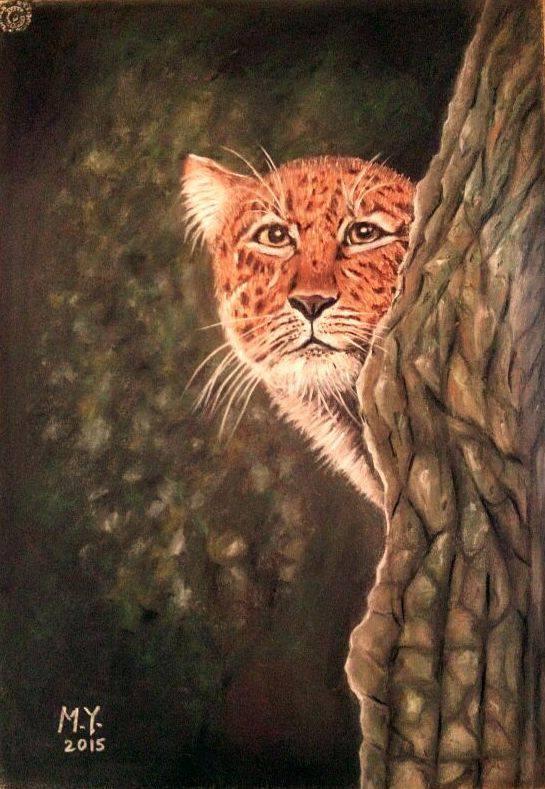 Hussain mousa. Leopard