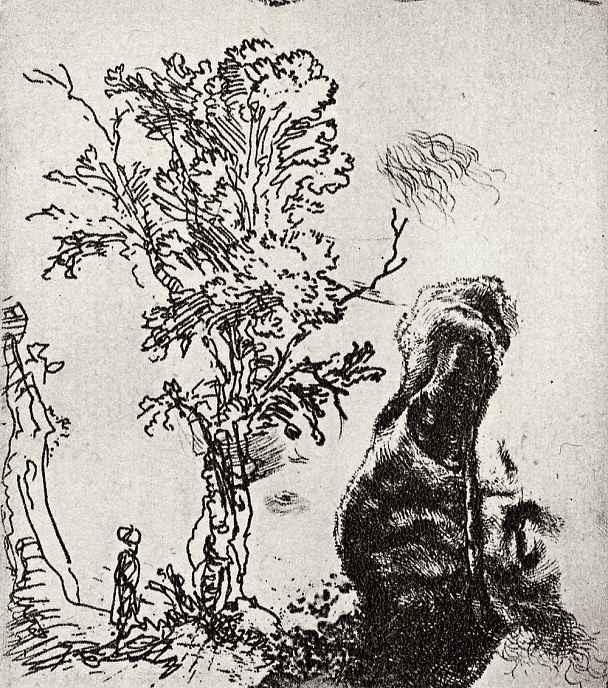 Рембрандт Харменс ван Рейн. Лист с деревом и мужским портретом