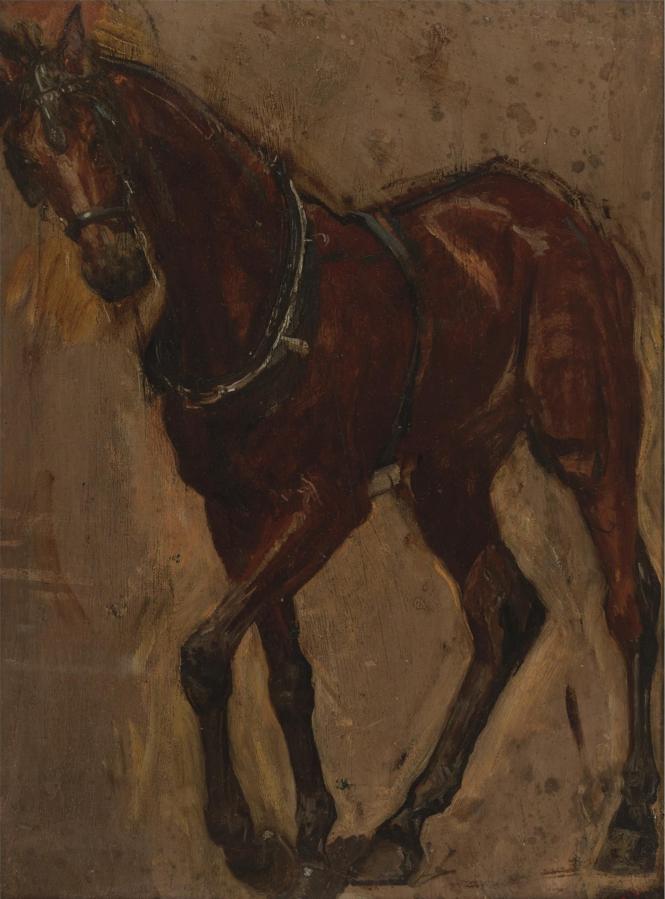 Thomas Eakins. Horse. Etude