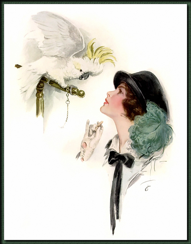 Harrison Fisher. Girl and white parrot