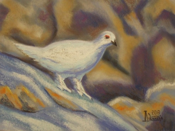 Larissa Lukaneva. The rock ptarmigan
