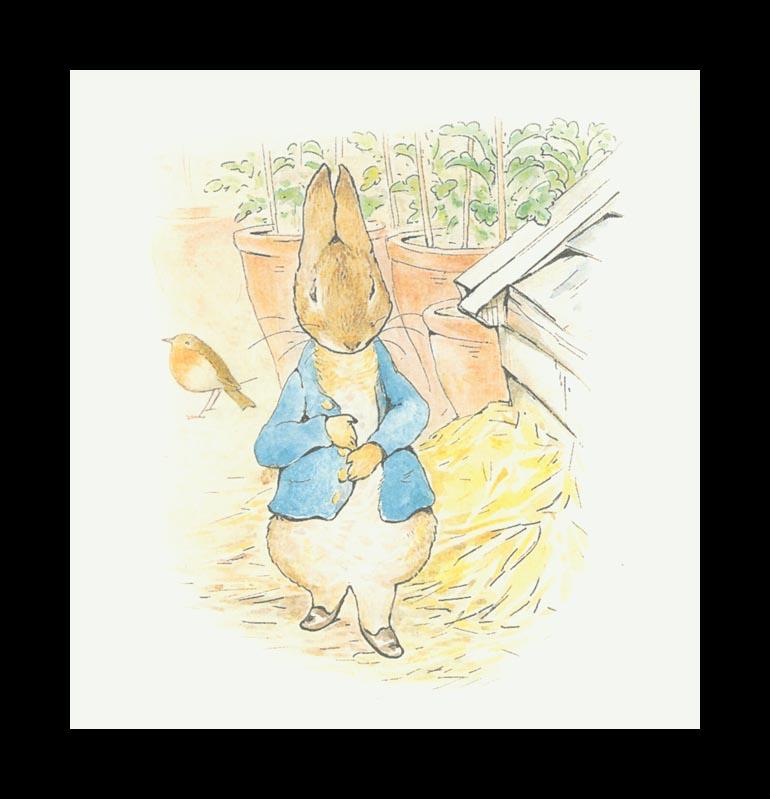 Бенджамин и Кролик Питер Банни. Сказка о кролике Питере 41