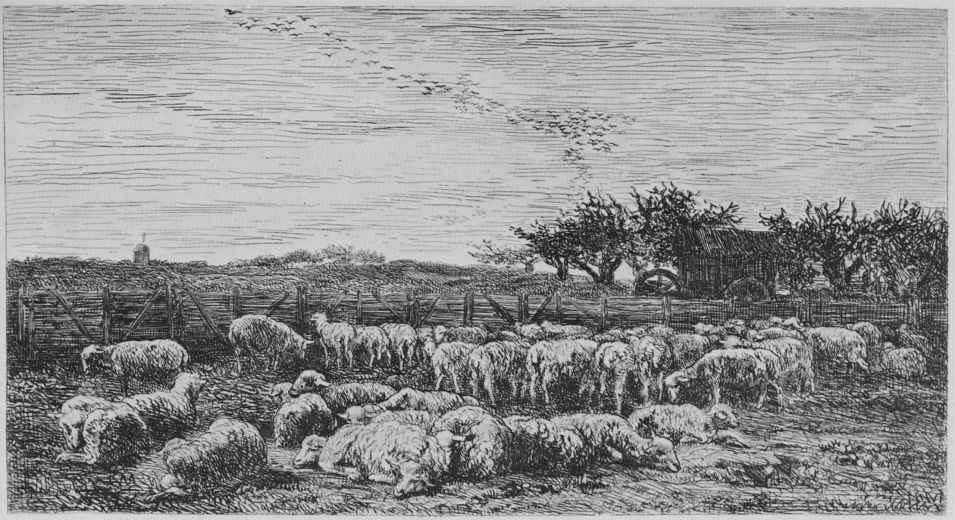 Charles-Francois Daubigny. A big sheep pen