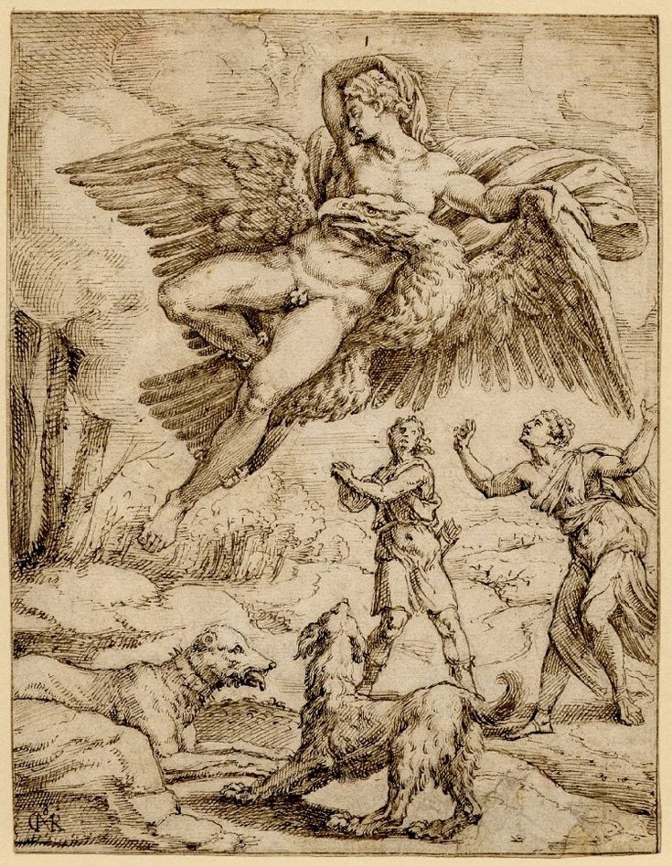 Mihil van Coxie. The Abduction Of Ganymede