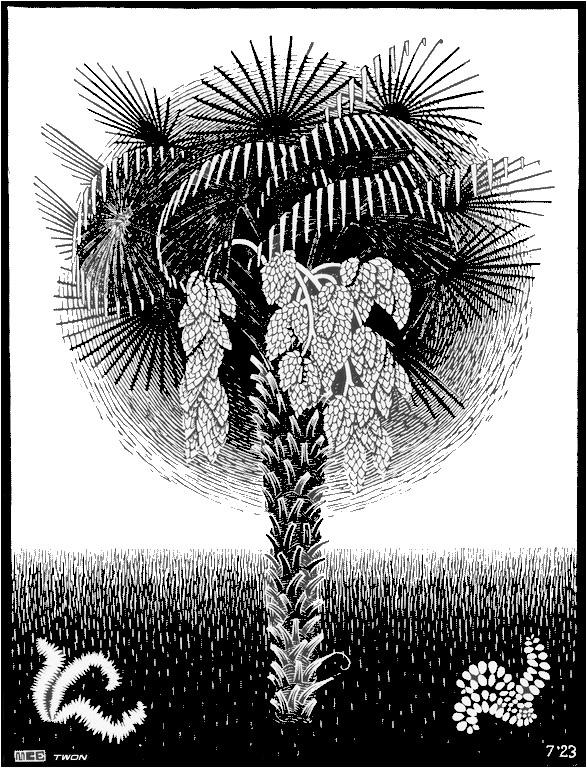 Мауриц Корнелис Эшер. Пальма