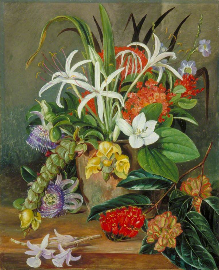 Marianna North. Still life with cultivated tropical flowers