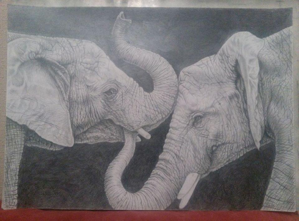 Bogdan Nikolaevich Doroshenko. Elephants.