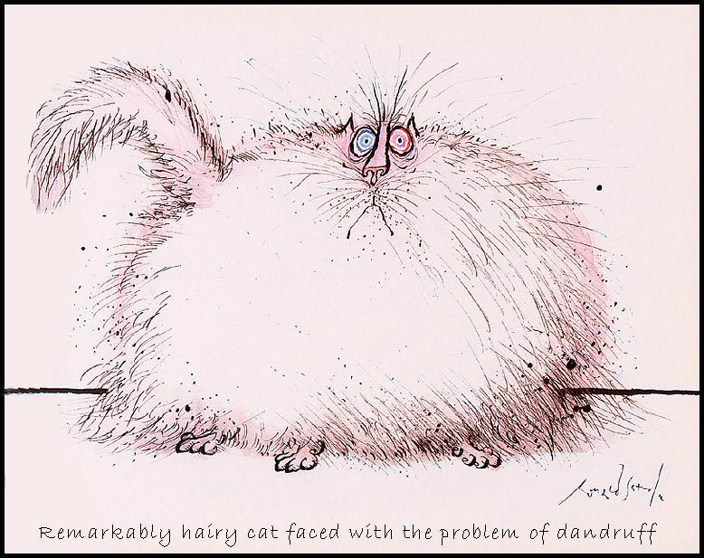 Прикольные рисунки котов и кошек карандашом