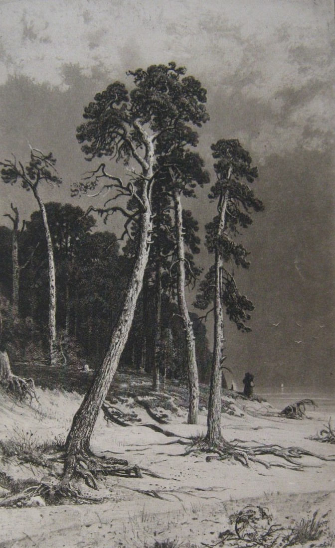 Ivan Shishkin. Pines
