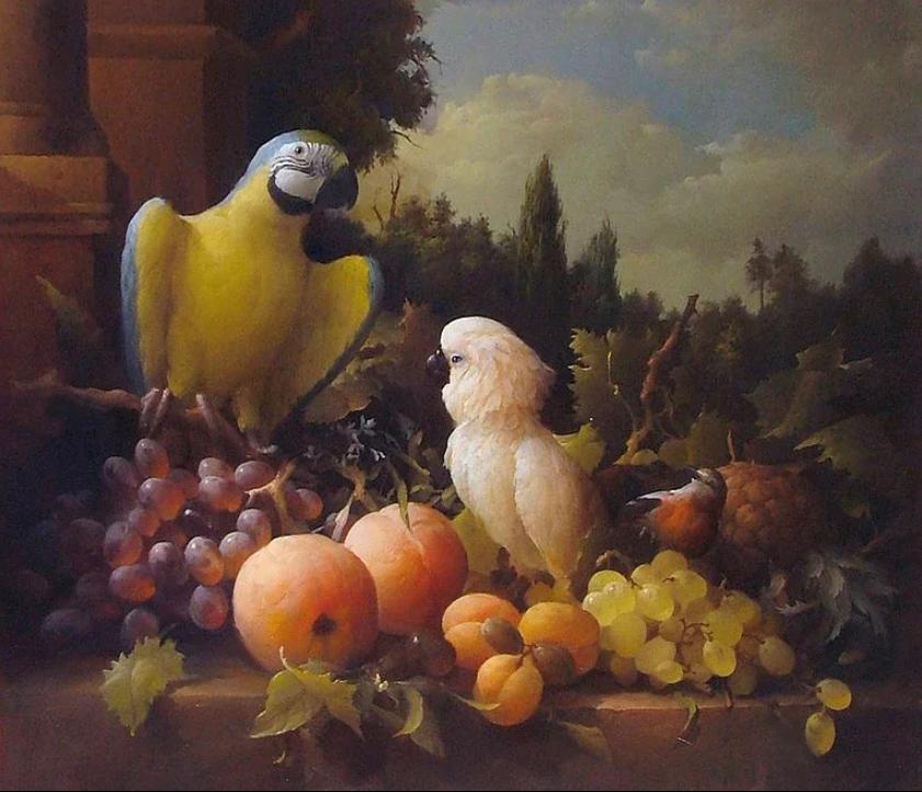 Дмитрий Севрюков. Птицы и фрукты