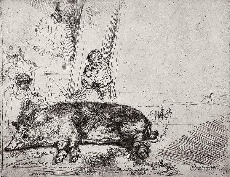 Рембрандт Ван Рейн. Свинья