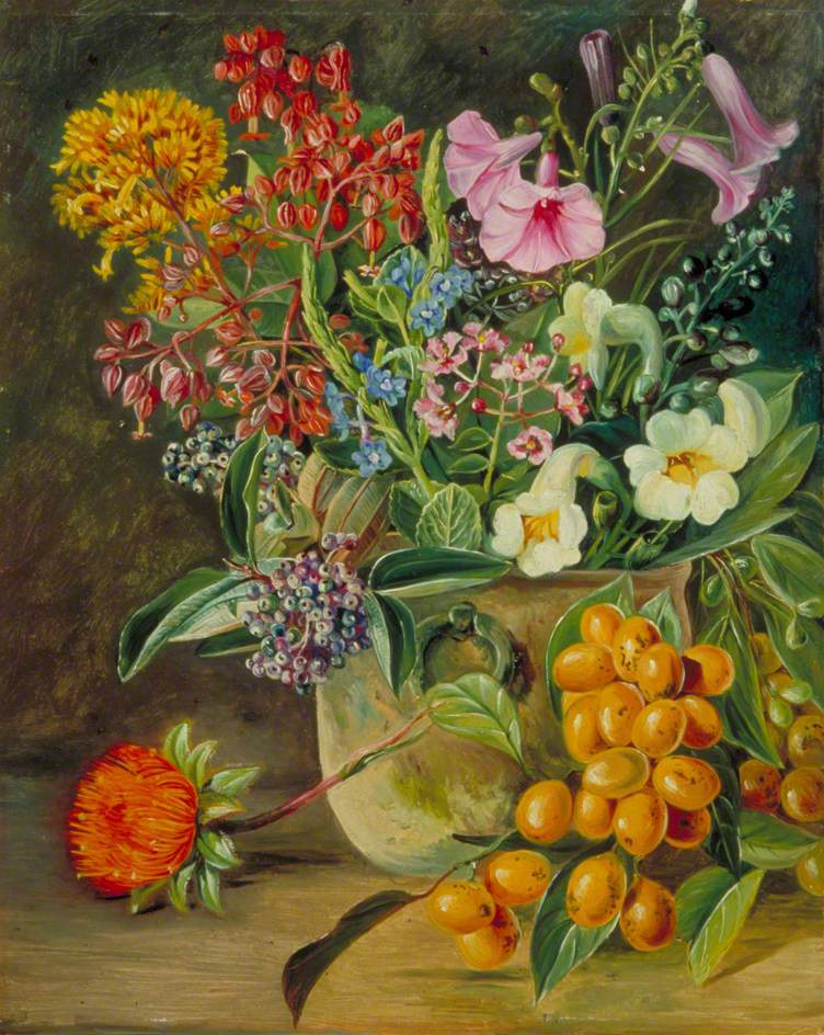 Marianna North. Still life with wild flowers and berries of the Brazilian forest