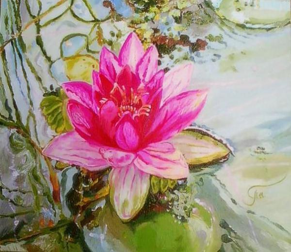 Tais. Lotus