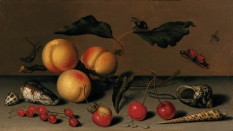 Baltazar van der Ast. Apricots, berries, shells and insects