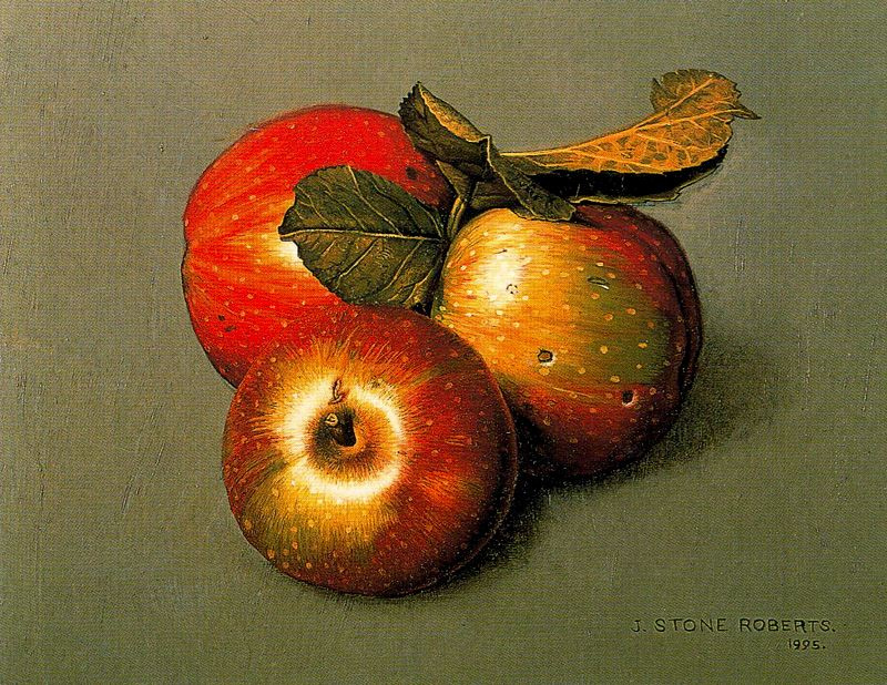 Стоун Робертс. Спелые яблоки