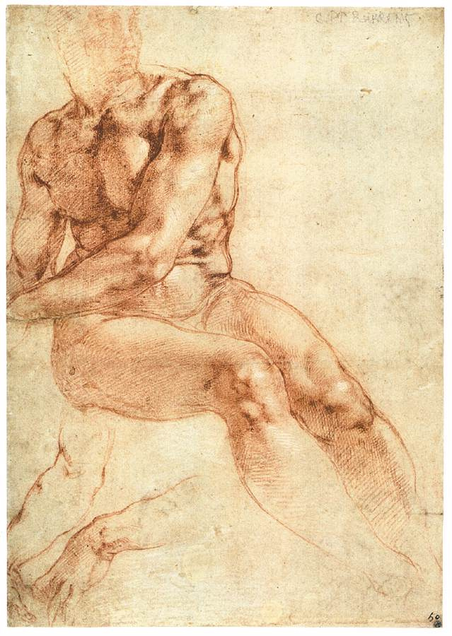Michelangelo Buonarroti. Sitting Nude