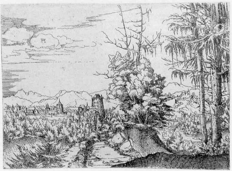Альбрехт Альтдорфер. Пейзаж с двумя елями