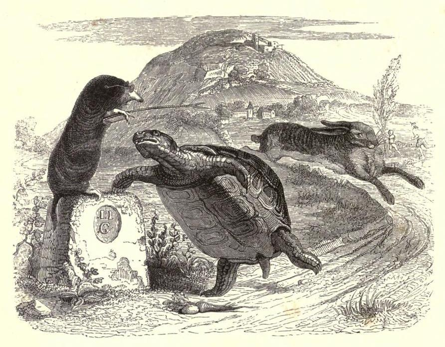 Jean Inias Isidore (Gerard) Granville. Mole, Hare and Tortoise