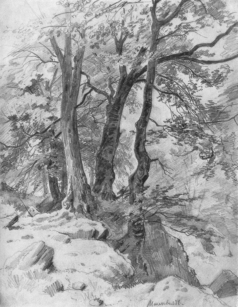 Иван Иванович Шишкин. В лесу