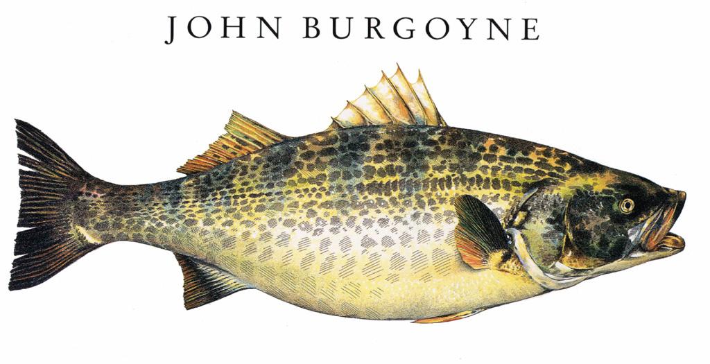 Джон Бургойн. Рыба