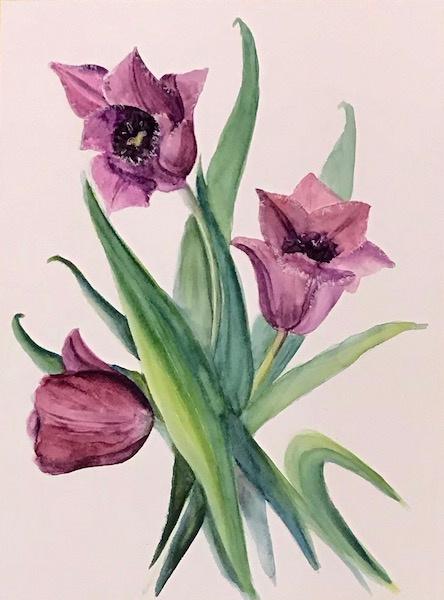 Лариса Луканева. Сиреневые тюльпаны