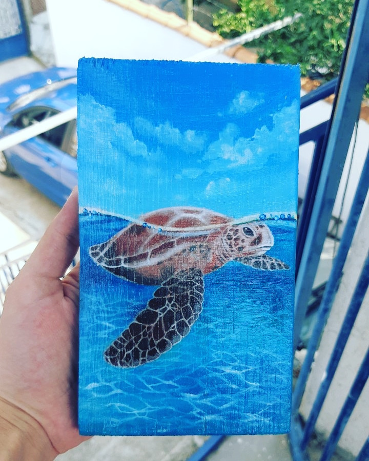 (no name). Sea turtle
