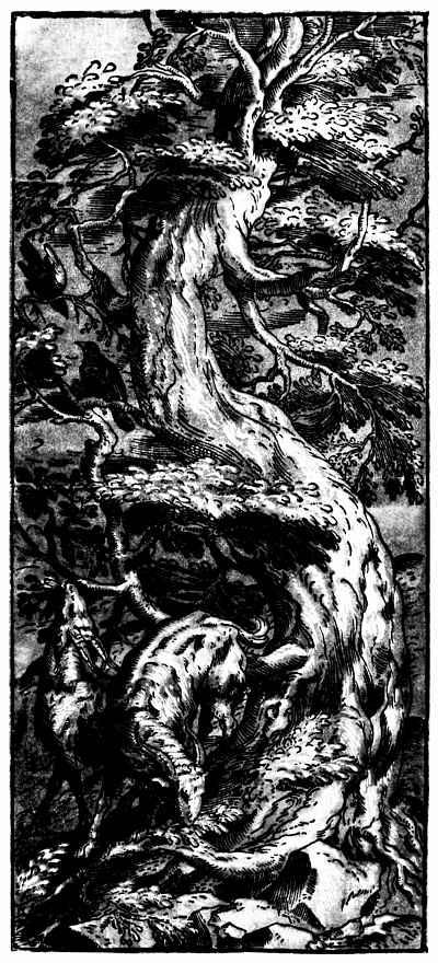 Тициан Вечеллио. Две козы под деревом