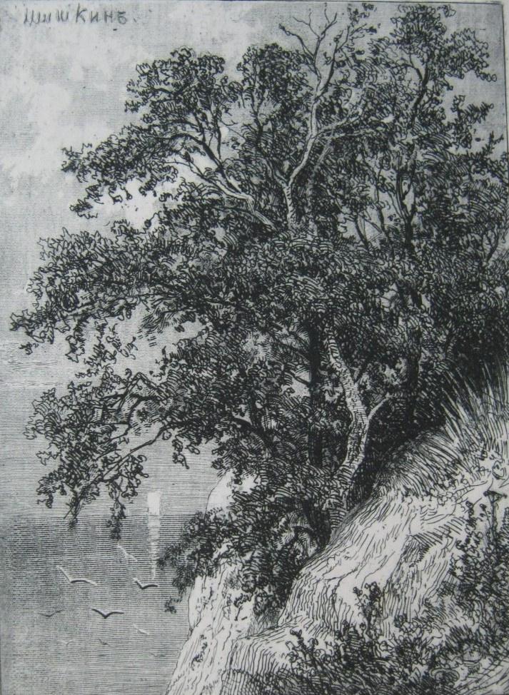 Ivan Ivanovich Shishkin. Cliff above the sea