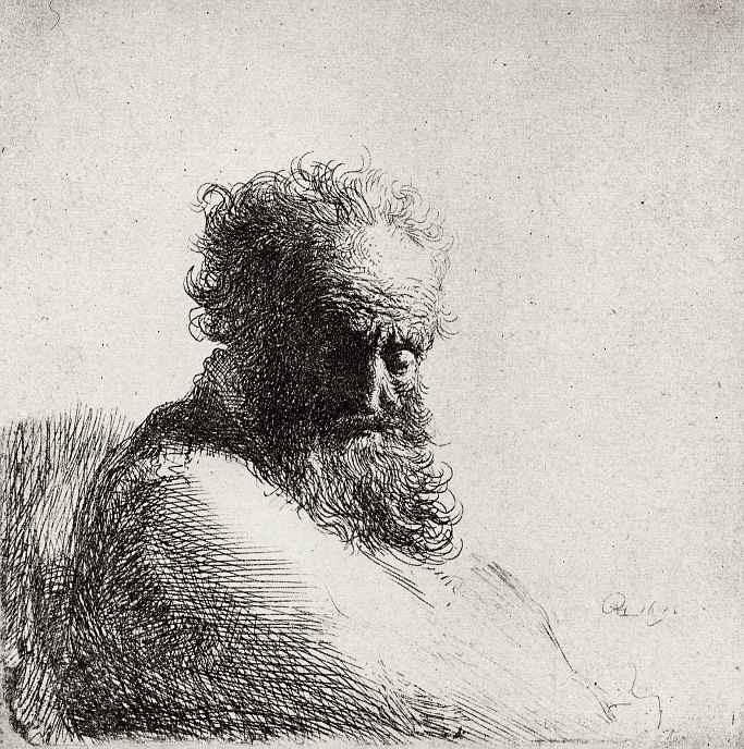 Рембрандт Ван Рейн. Голова старика с длинной бородой