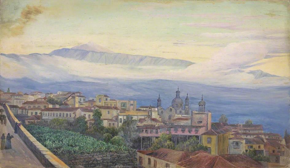 Марианна Норт. Вид на Тенерифе, Канарские острова