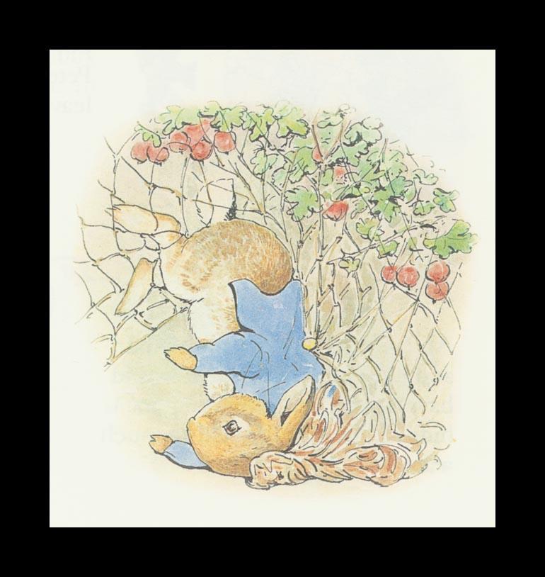 Бенджамин и Кролик Питер Банни. Сказка о кролике Питере 7