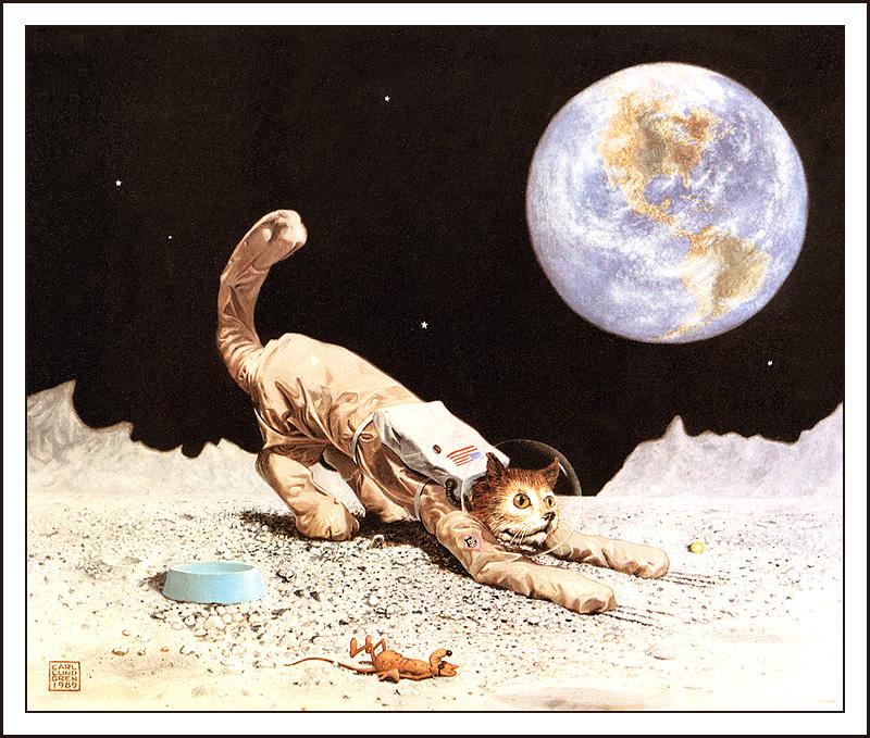 Карл Лундгрен. Кот в космосе