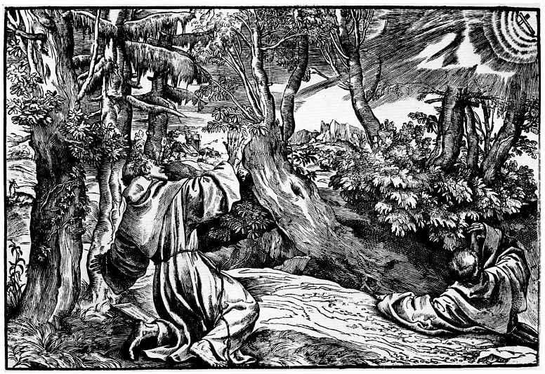 Тициан Вечеллио. Стигматизация святого Франциска