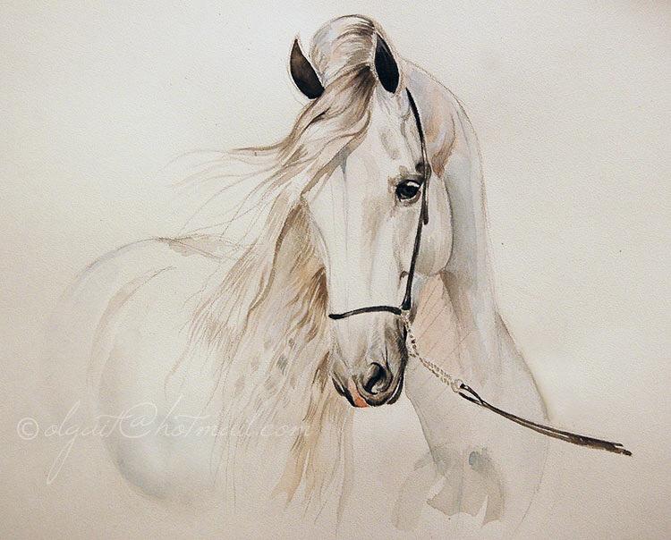 Olga Itina. Andalusian horse