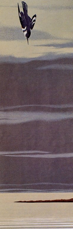 Алекс Колвилл. Обыкновенный зимородок
