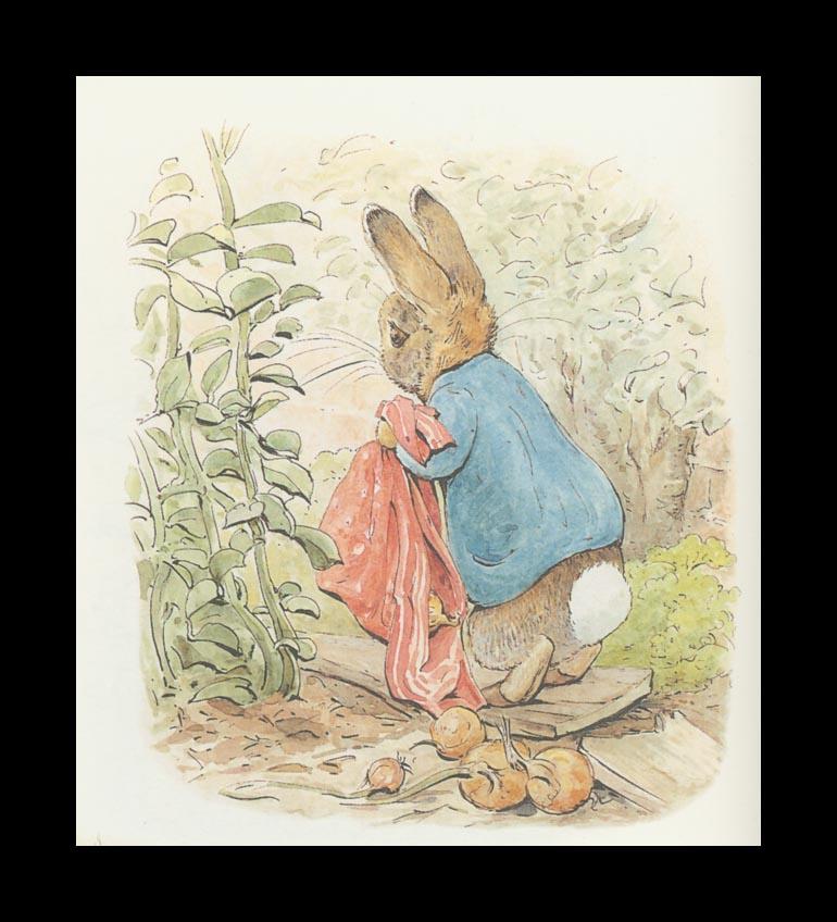Бенджамин и Кролик Питер Банни. Сказка о кролике Питере 20
