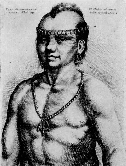 Венцель Холлар. Портрет индейца из Вирджинии
