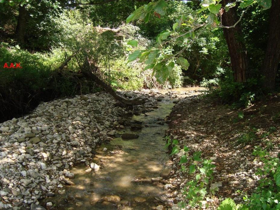 AAK. Mountain river
