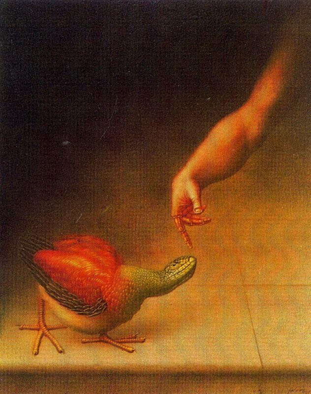 Висуализадор Де Ймаген. Сюжет 15
