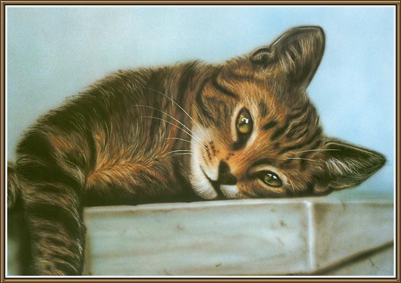 Грег Херли. Игривый кот
