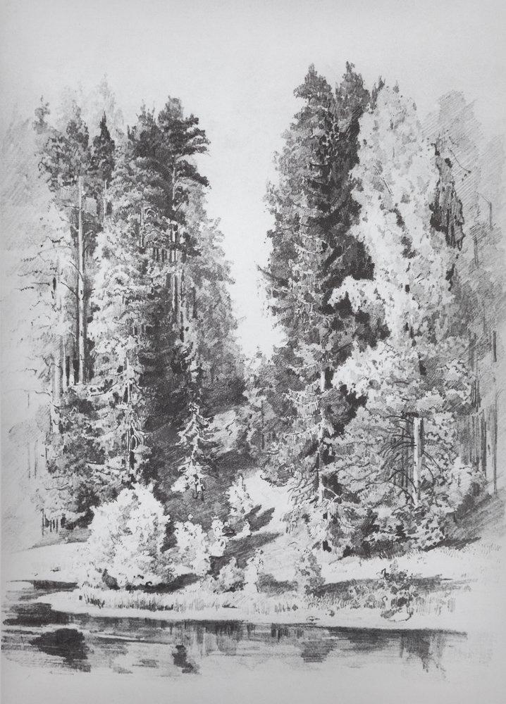 Иван Иванович Шишкин. В парке