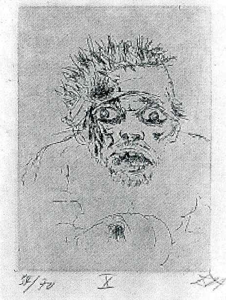 Отто Дикс. Раненый мужчина, убегая