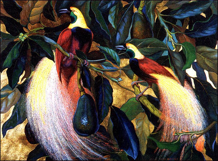 Джесси Армс Ботк. Райские птицы