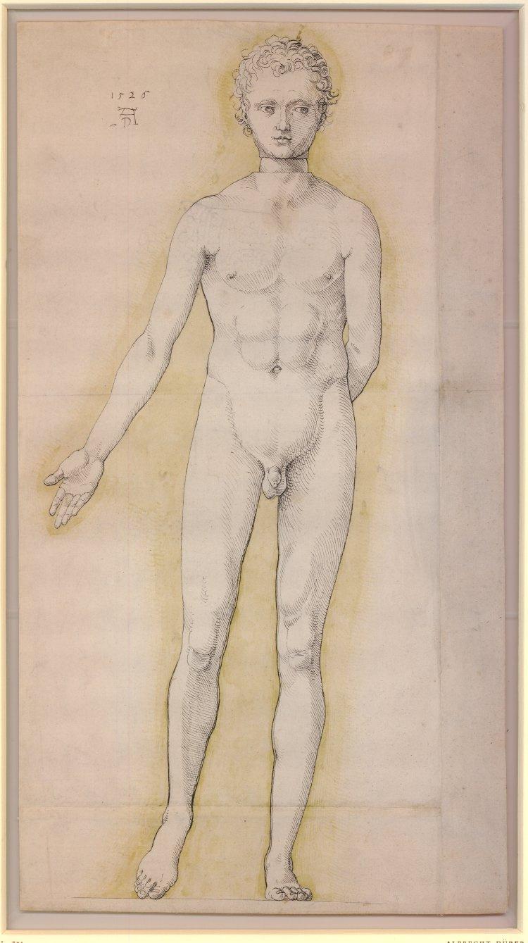 Albrecht Dürer. Naked young man