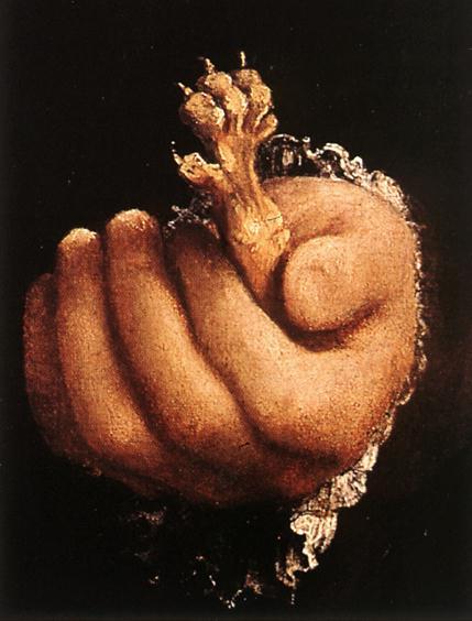Лоренцо Лотто. Рука