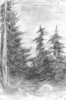 Natalya Garber. Forest