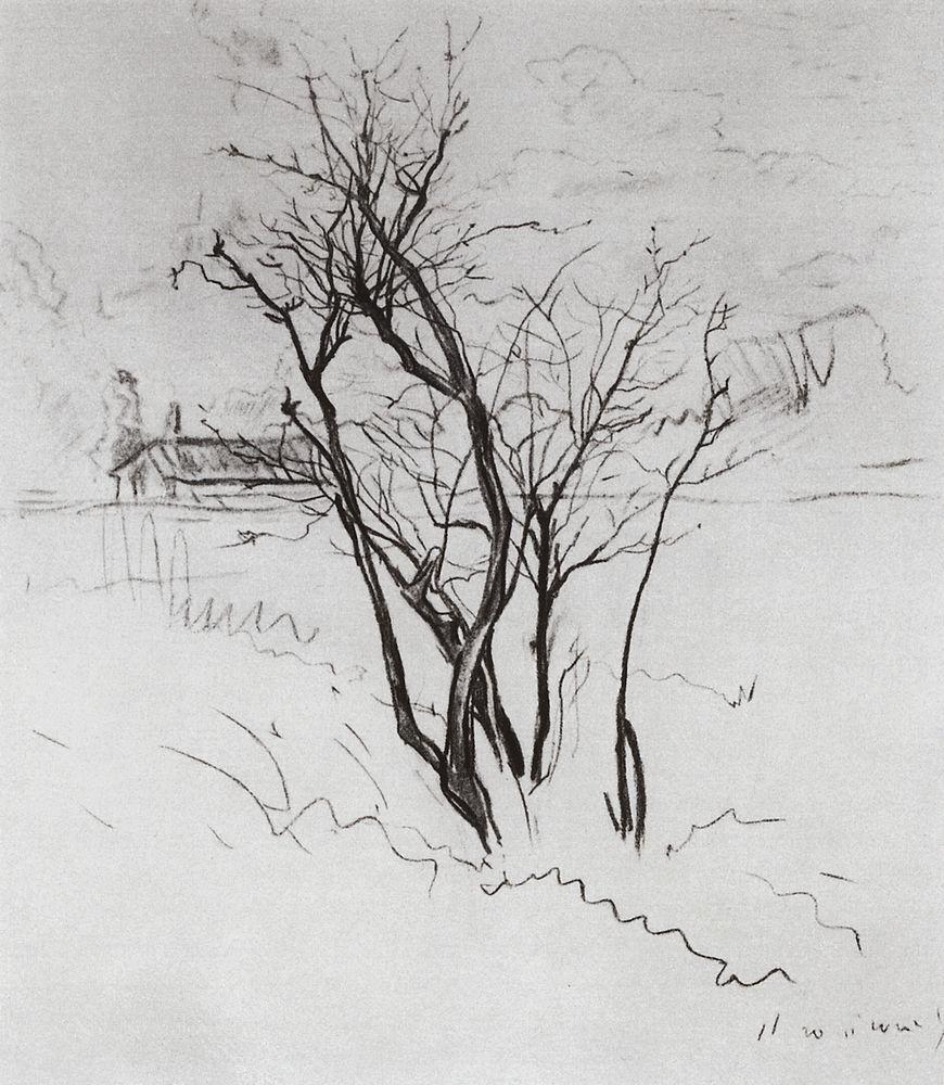 Константин Андреевич Сомов. Дерево в поле