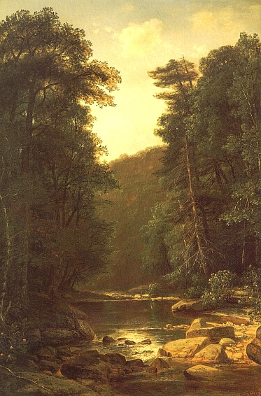 George Hetzel. Forest stream